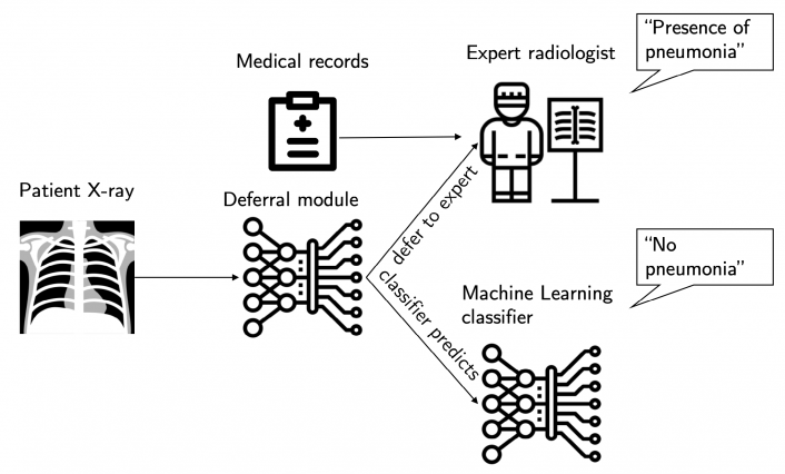 The system either queries the expert to diagnose the patient based on their chest X-ray and medical records, or makes the diagnosis itself by solely looking at their X-ray