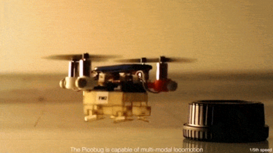 "The ""Flying Monkey"" robot is a triple threat: it walks, flies, and grasps."