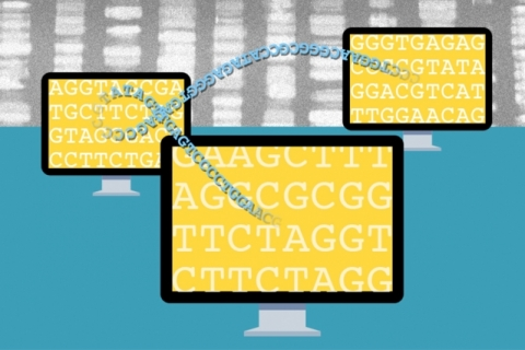 Privacy and genomic studies1