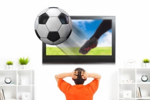 Exploiting video game software yields broadcast-quality 3-D video of soccer games in real time.